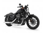 09_Harley-XL883N_AF