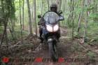 2012-altrider-to-host-hoh-rainforest-ride 3