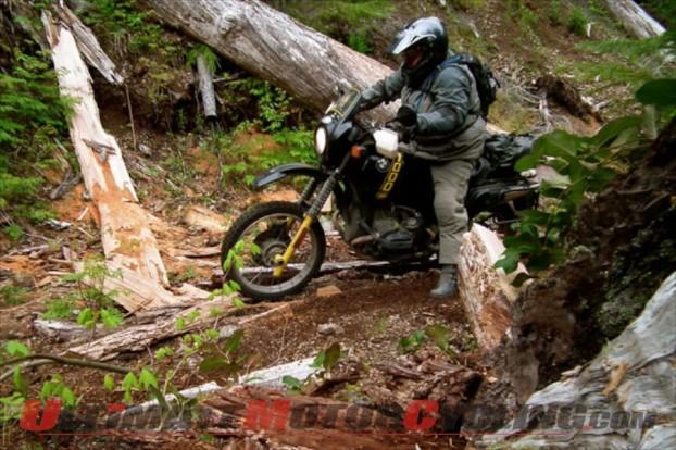 2012-altrider-to-host-hoh-rainforest-ride 4