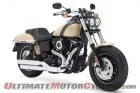 2014 Harley-Davidson Fat Boy in Sand Cammo Denim