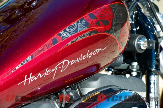 2014-Harley-Davidson-Sportster-1200-Custom-HD1-paisley-paint