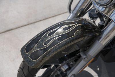 2017 Harley-Davidson Street Glide Special Buyer's Guide fender