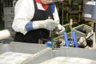 Takatsuka Engine Assembly Plant Pistons