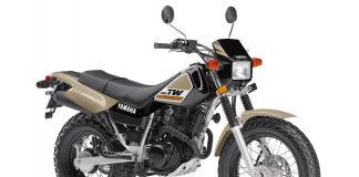 2020 Yamaha TW200 for sale